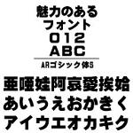 ARゴシック体S (Windows版 TrueTypeフォントJIS2004字形対応版)