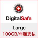 DigitalSafe(デジタルセーフ):Large 100GB/年額支払