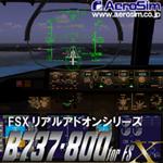 B737-800 for FSX